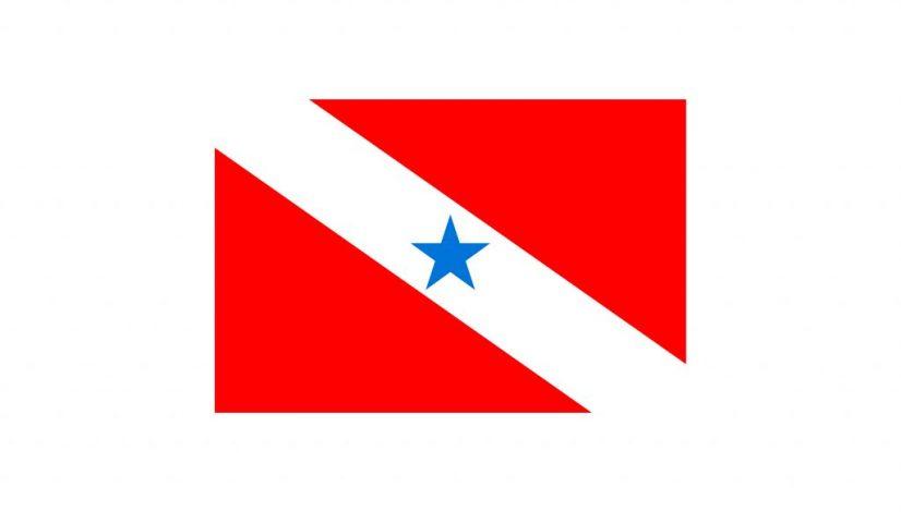 Bandeira do estado do Pará