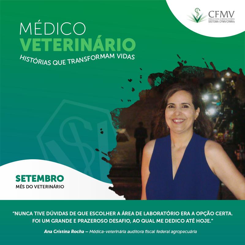 Médico-veterinário em laboratórios