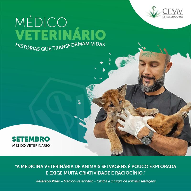 Médico-veterinário de animais selvagens