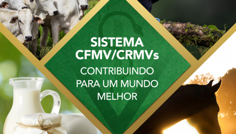 Folder Institucional - 50 anos do Sistema CFMV/CRMVs
