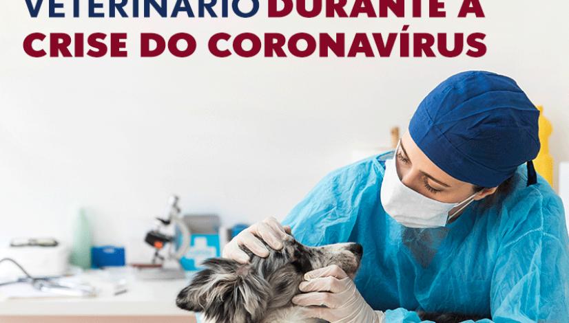 Recomendações do CFMV para o atendimento veterinário durante a crise do coronavírus