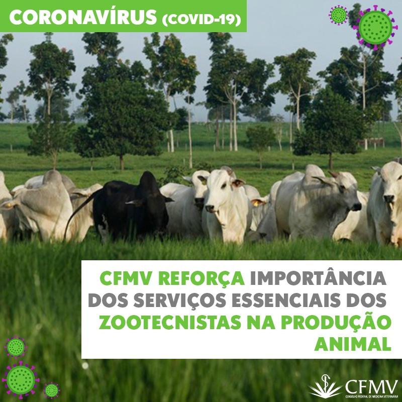 CFMV reforça importância dos serviços essenciais dos zootecnistas na produção animal