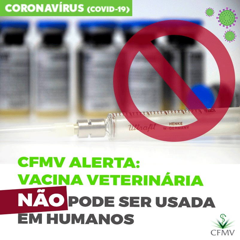CFMV Alerta: vacina veterinária não pode ser usada em humanos