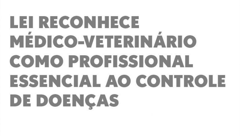 Lei reconhece médico-veterinário como profissional essencial ao controle de doenças