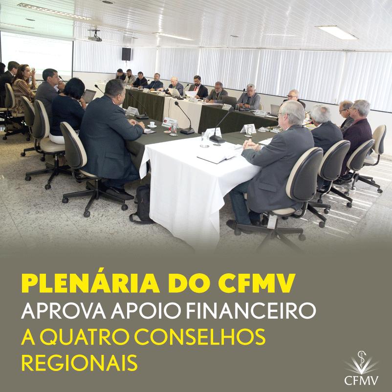 Plenária do CFMV aprova apoio financeiro a quatro conselhos regionais