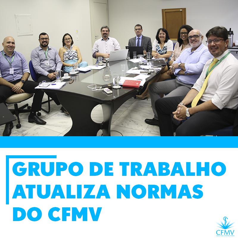 Grupo de Trabalho atualiza normas do CFMV