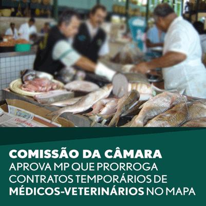 Comissão da Câmara aprova MP que prorroga contratos temporários de médicos-veterinários no Mapa