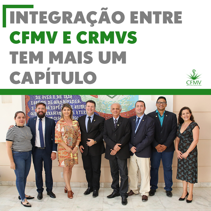 Integração entre CFMV e CRMVs tem mais um capítulo