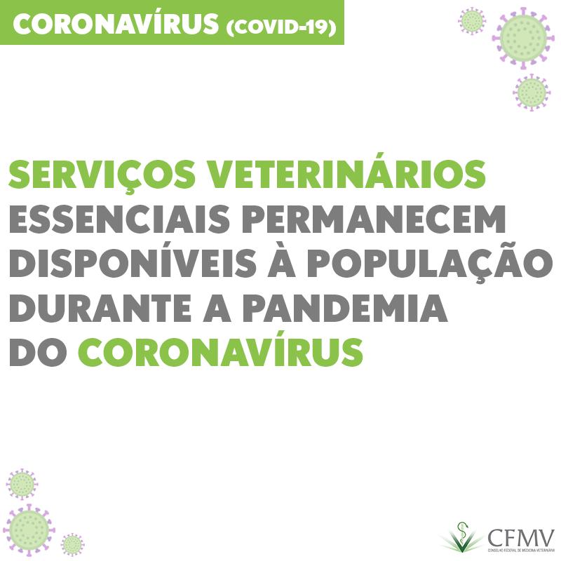 Serviços veterinários essenciais permanecem disponíveis à população durante a pandemia do coronavírus