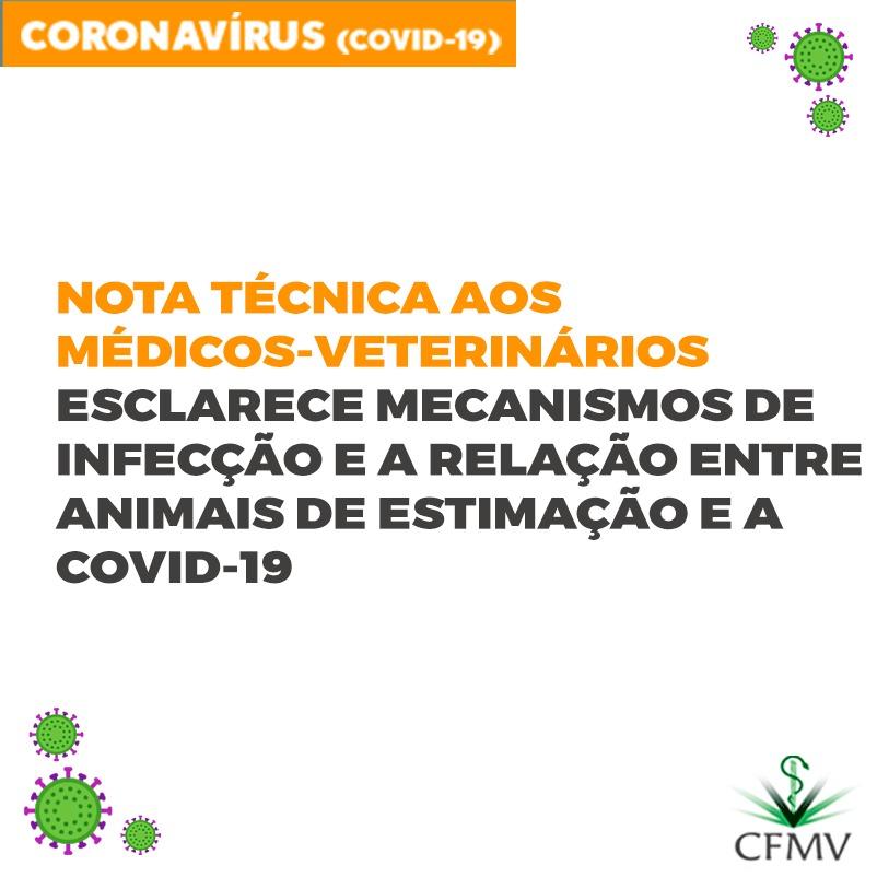 Nota técnica aos médicos-veterinários esclarece mecanismos de infecção e a relação entre animais de estimação e a COVID-19