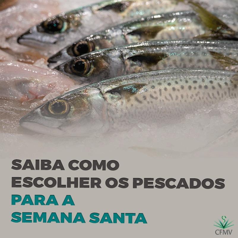 Saiba como escolher os pescados para a Semana Santa