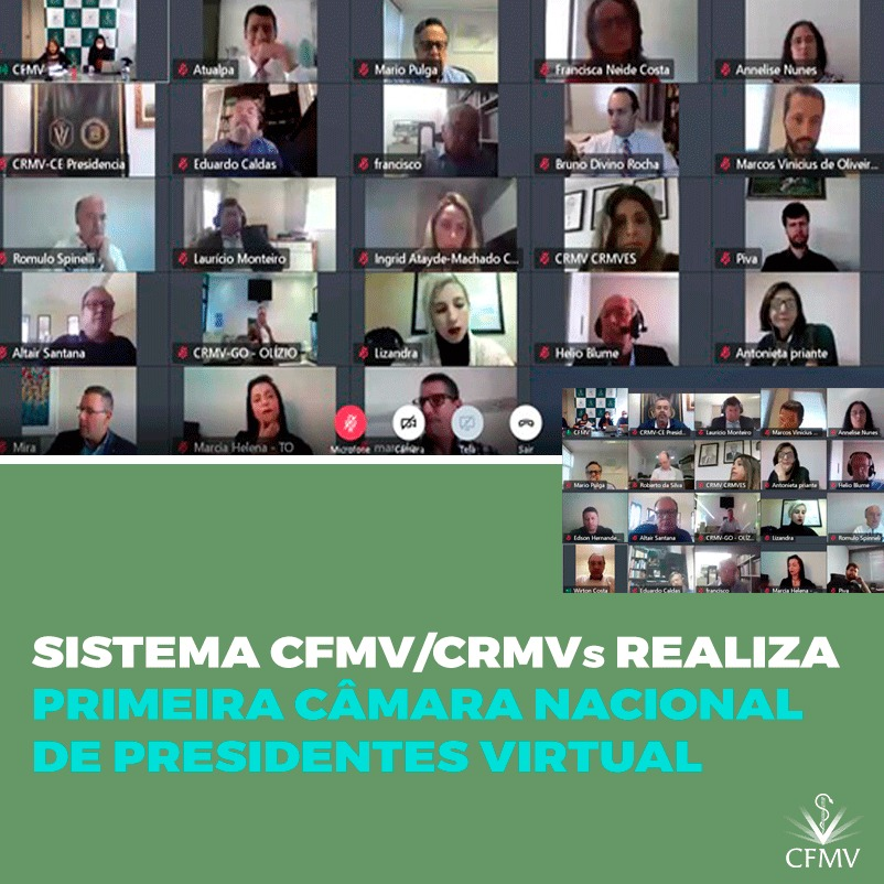 Sistema CFMV/CRMVs realiza sua primeira Câmara Nacional de Presidentes virtual