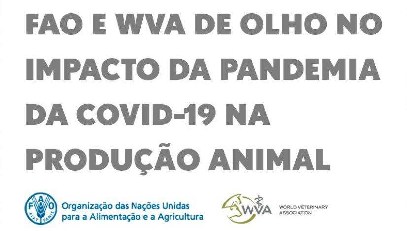 FAO e WVA de olho no impacto da pandemia da covid-19 na produção animal