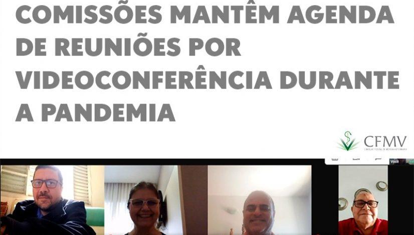Comissões mantêm agenda de reuniões por videoconferência durante a pandemia