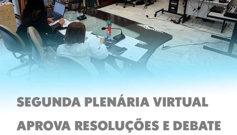 Segunda plenária virtual aprova resoluções e debate assuntos emergenciais