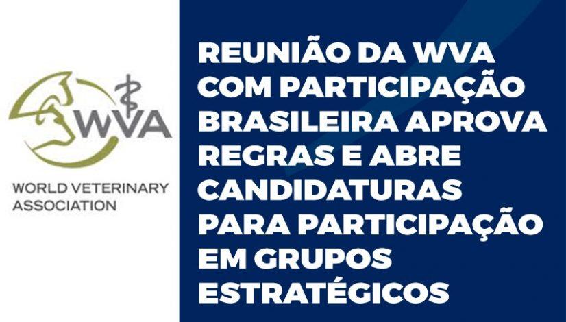 Reunião da WVA com participação brasileira aprova regras e abre candidaturas para participação em grupos estratégicos