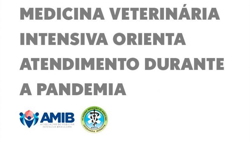 Medicina Veterinária Intensiva orienta atendimento durante a pandemia