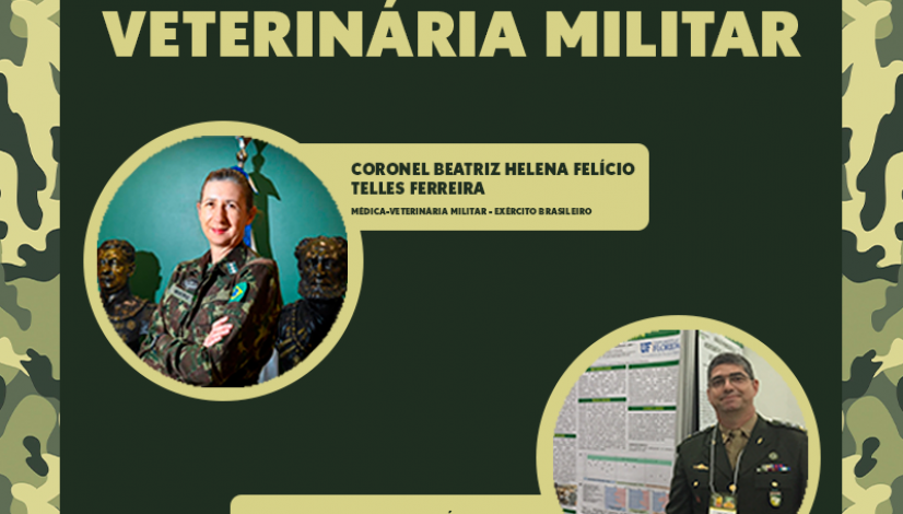 dia-mv-militar