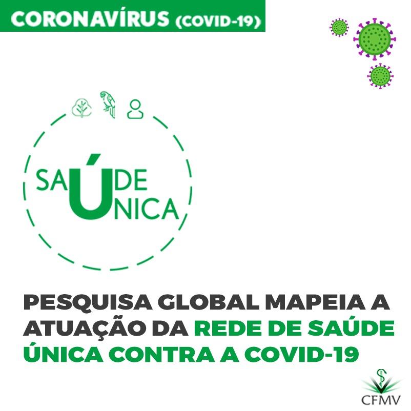 Pesquisa global mapeia a atuação da rede de saúde única contra a covid-19