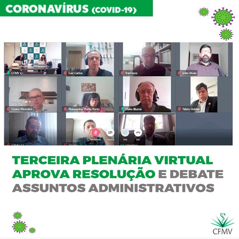 Terceira Plenária virtual aprova resolução e debate assuntos administrativos