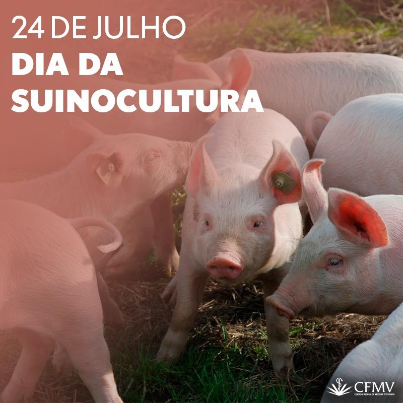 24 de Julho – Dia da Suinocultura