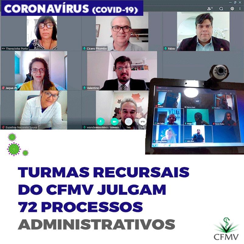 Turmas recursais do CFMV julgam 72 processos administrativos