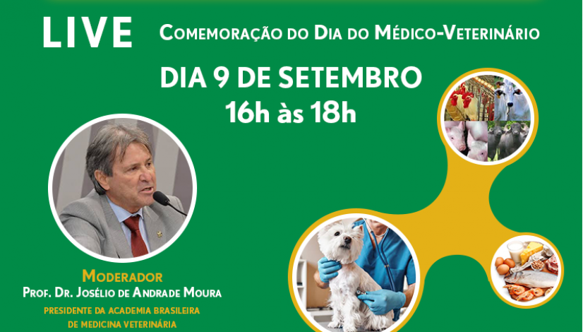 Abramvet promove debate on-line no dia 9