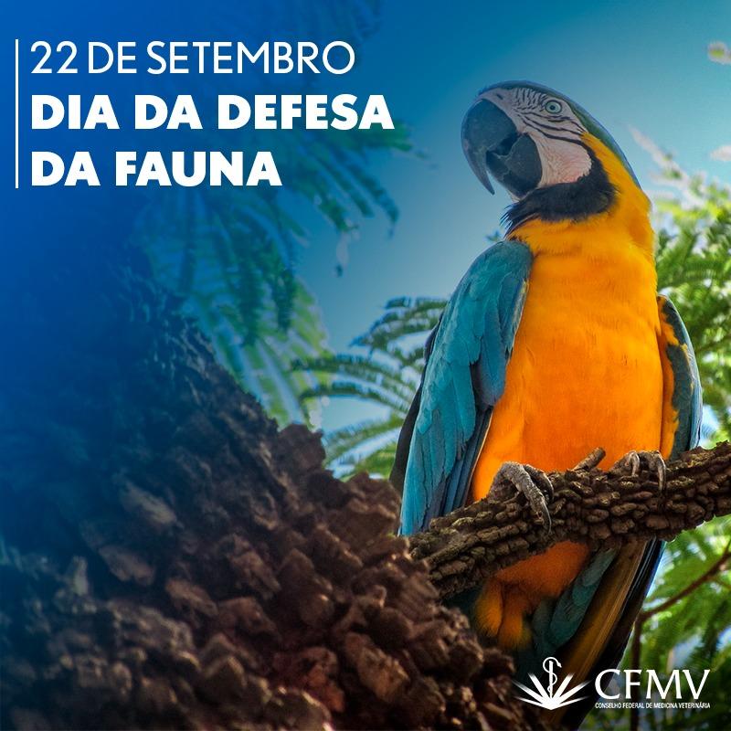 Dia da Defesa da Fauna lembra necessidade de combater desmatamento e tráfico de animais