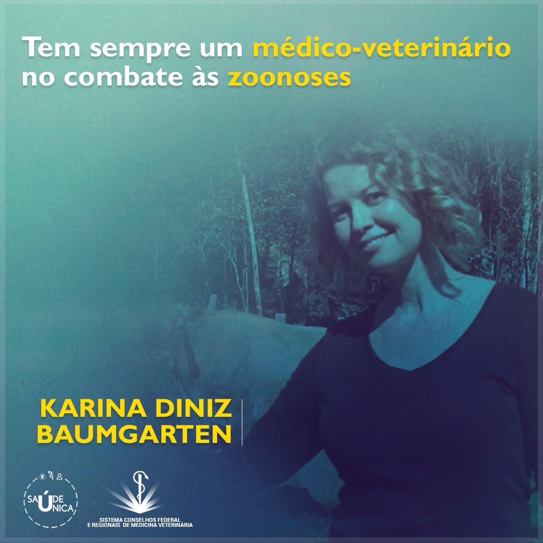 Post Karina Diniz Baumgarten