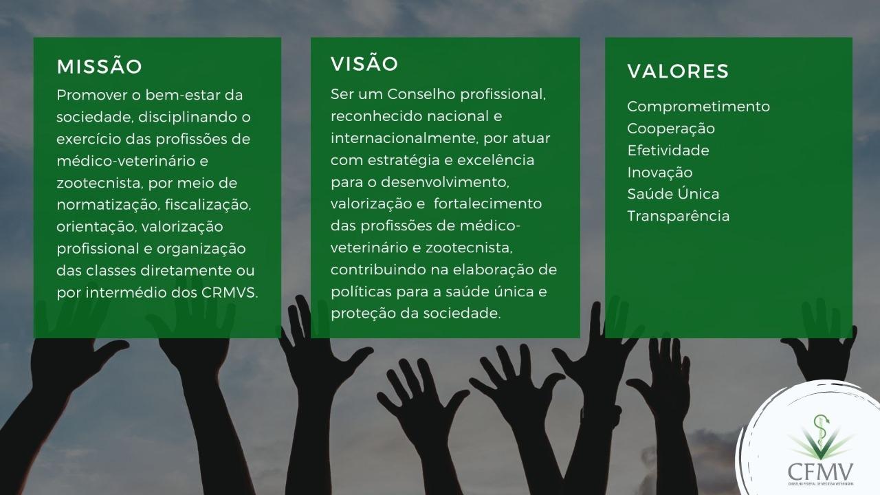 Missão, visão e valores