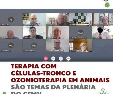 Terapia com células-tronco e ozonioterapia em animais são temas da plenária do CFMV