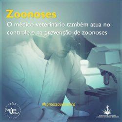 O médico-veterinário também atua no controle e na prevenção de zoonoses