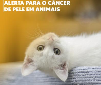 Dezembro Laranja - Câncer de Pele