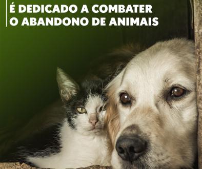 Dezembro - Mês de Combate ao Abandono de Animais