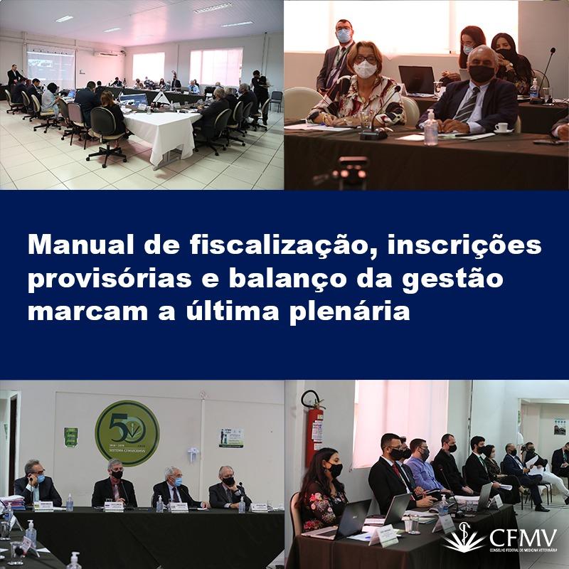 Manual de fiscalização, inscrições provisórias e balanço da gestão marcam a última plenária