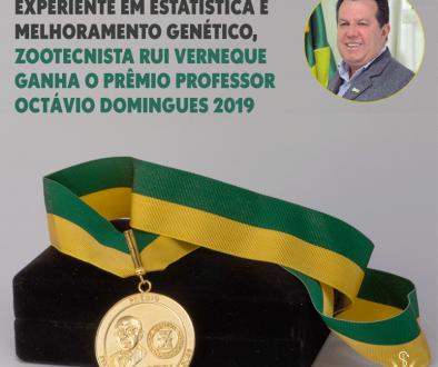Laiza Bonella Gomes