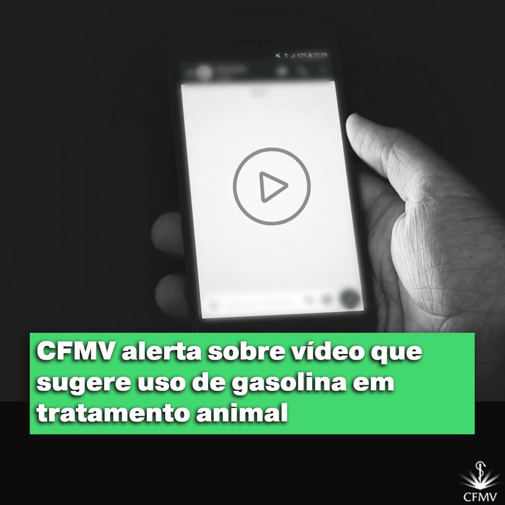 CFMV alerta sobre vídeo que sugere uso de gasolina em tratamento animal