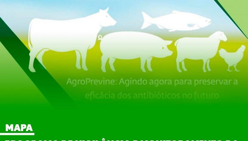 Programa do Mapa monitora o perfil de resistência aos antimicrobianos nas cadeias de produção de proteína animal