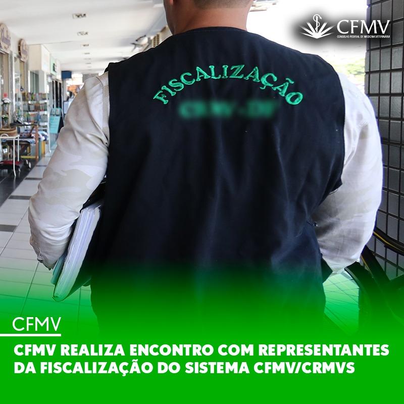 CFMV realiza Encontro com Representantes da Fiscalização do Sistema CFMV/CRMVs