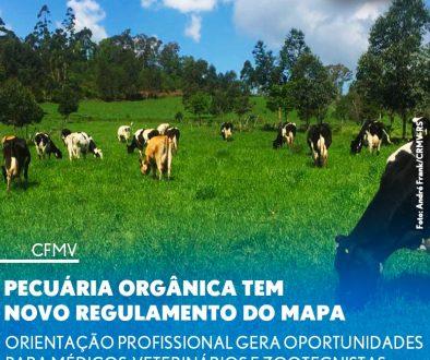Pecuária orgânica tem novo regulamento do Mapa