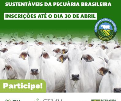 Prêmio vai reconhecer iniciativas sustentáveis da pecuária brasileira