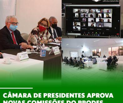 Câmara de Presidentes aprova novas comissões do Prodes
