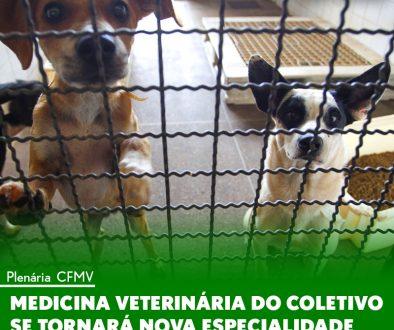 Medicina Veterinária do Coletivo se tornará nova especialidade
