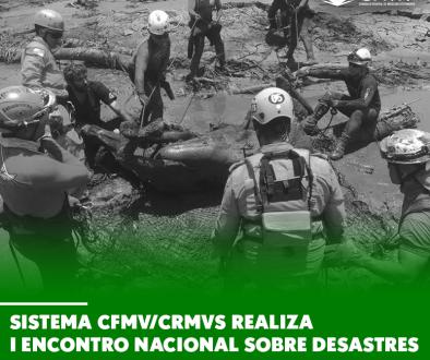 Sistema CFMV/CRMVs realiza I Encontro Nacional sobre Desastres em Massa Envolvendo Animais
