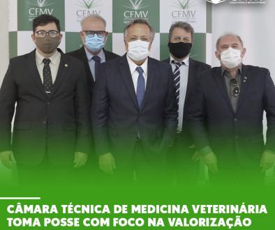 Câmara Técnica de Medicina Veterinária toma posse com foco na valorização profissional