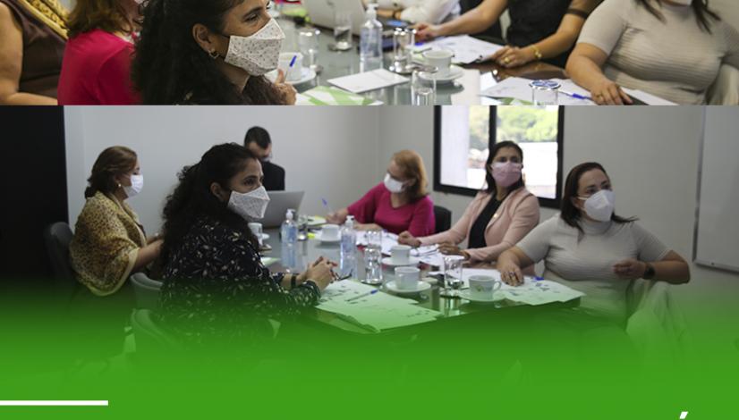 Conselhos Regionais do Pará e de Pernambuco participam de treinamento na sede do CFMV
