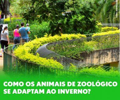Animais Zoológicos