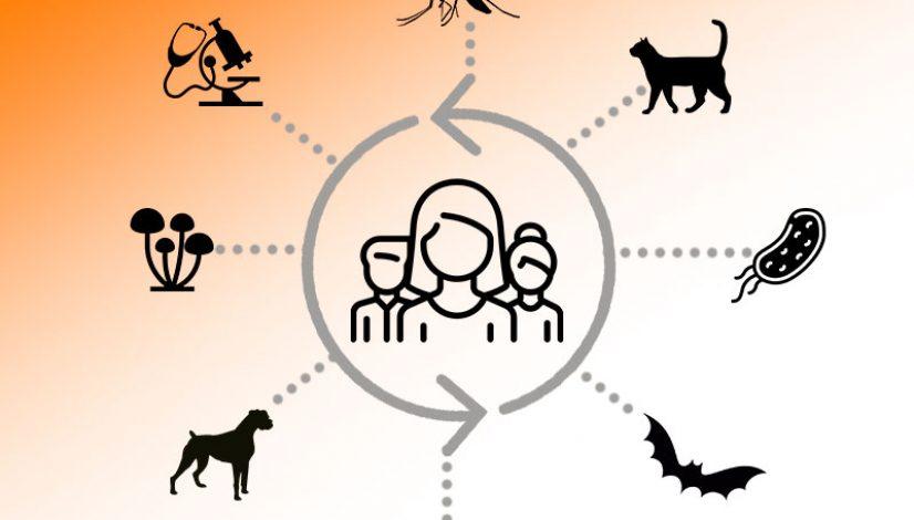 Dia Mundial das Zoonoses coloca em destaque importância do médico-veterinário na saúde pública