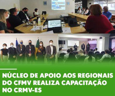Núcleo de Apoio aos Regionais do CFMV realiza capacitação no CRMV-ES