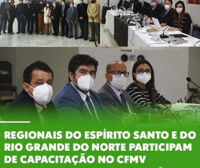 Regionais do Espírito Santo e do Rio Grande do Norte participam de capacitação no CFMV